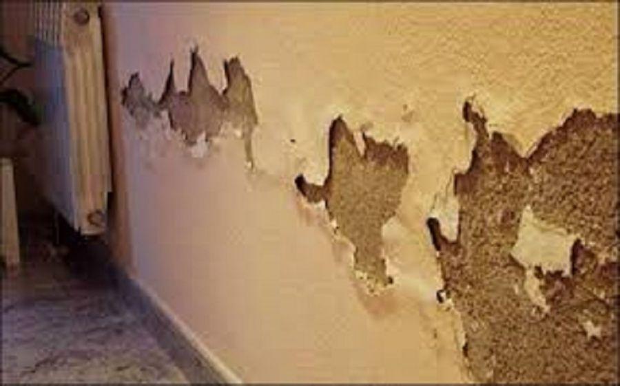 رفع نم ساختمان بدون خرابی